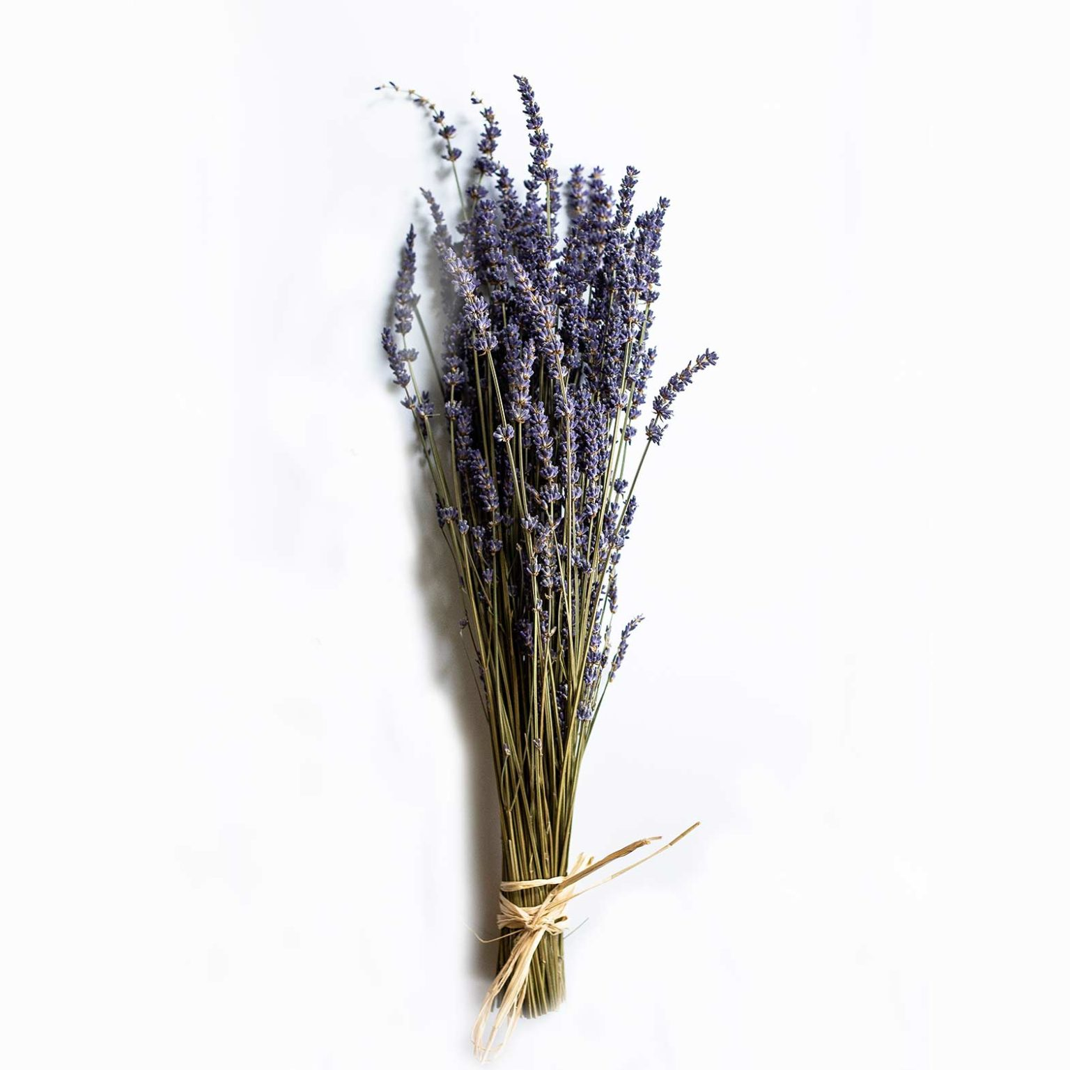 Lavender Dried by Ancient Ways Botanicals
