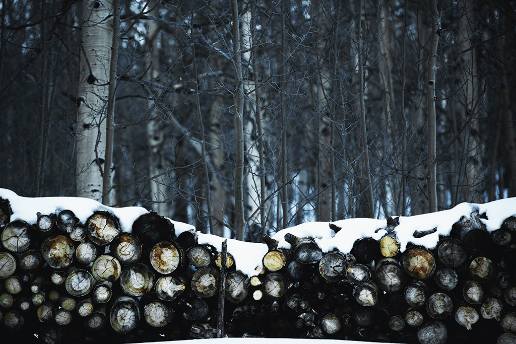 image of logs covered in snow with heavy texture